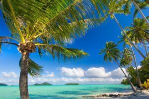 Bora Bora Big