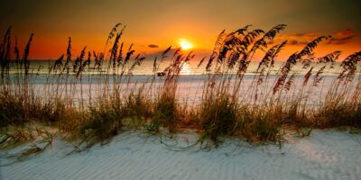 Sunset Serenade Big