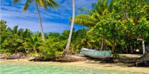 Tropical Paradise Big